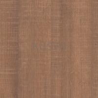H1151 Dub Arizona hnedý